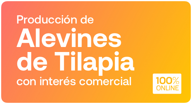 Producción de Alevines de Tilapia