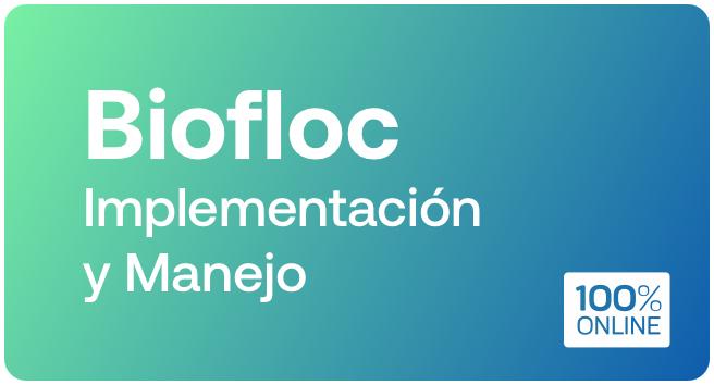 Biofloc Implementacion y manejo